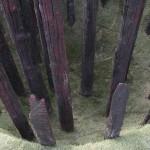 FREJ, timber, Essarts, Canada 2007